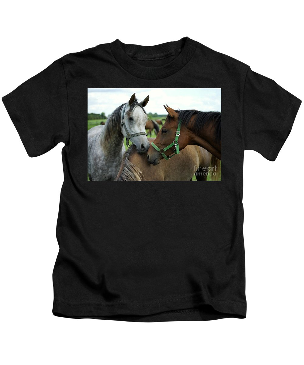 Horse Kids T-Shirt featuring the photograph Having A Chat by Angel Ciesniarska