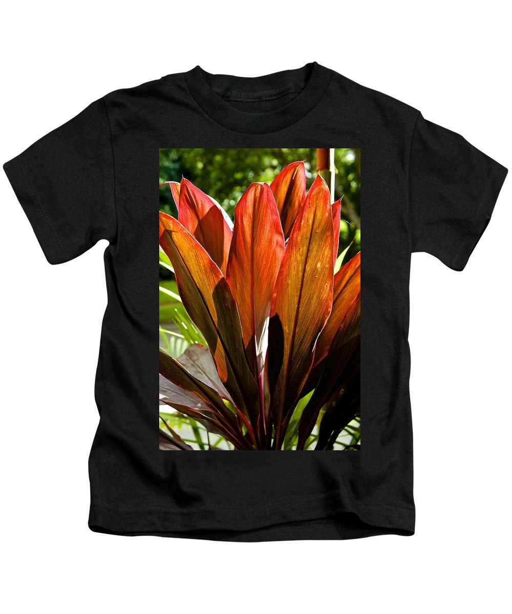 Plants Kids T-Shirt featuring the photograph Hawaiian Ti Plant by Barbara Zahno