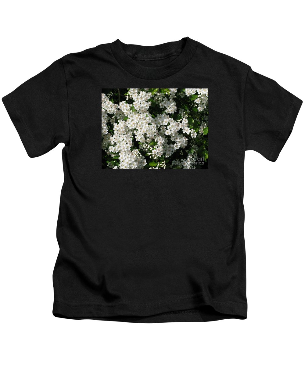 Hawthorn Kids T-Shirt featuring the photograph Hawthorn In Bloom by Ann Horn