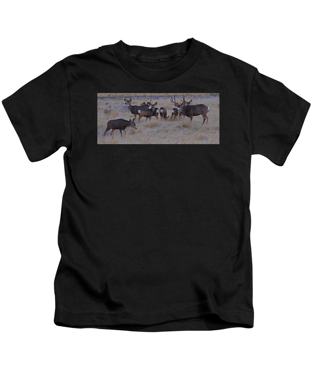 Mule Deer Kids T-Shirt featuring the photograph Hesitant Intruder by Mike and Sharon Mathews
