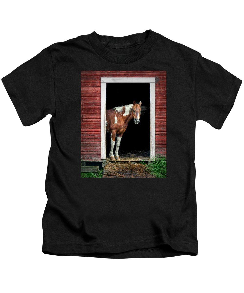 Horse Kids T-Shirt featuring the photograph Horse - Barn Door by Nikolyn McDonald