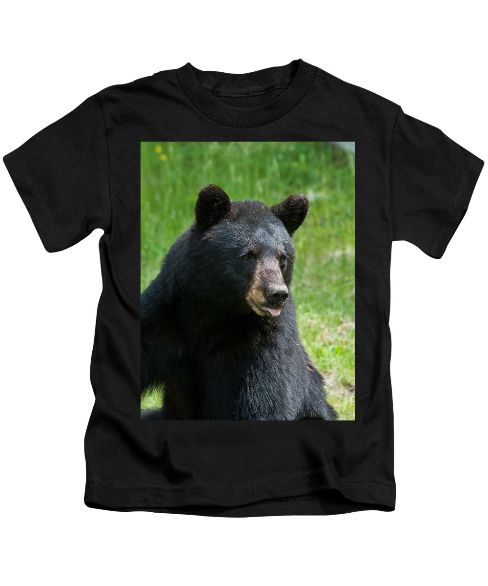 Bears Kids T-Shirt featuring the photograph Hot Day In Bear Country by Brenda Jacobs