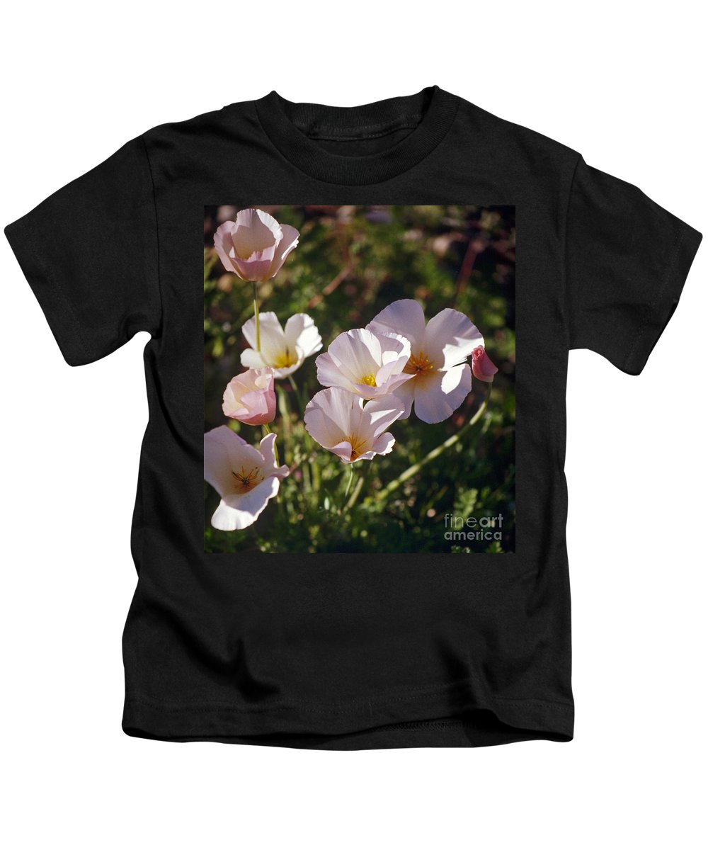 Flowers Kids T-Shirt featuring the photograph Icelandic Poppies by Kathy McClure