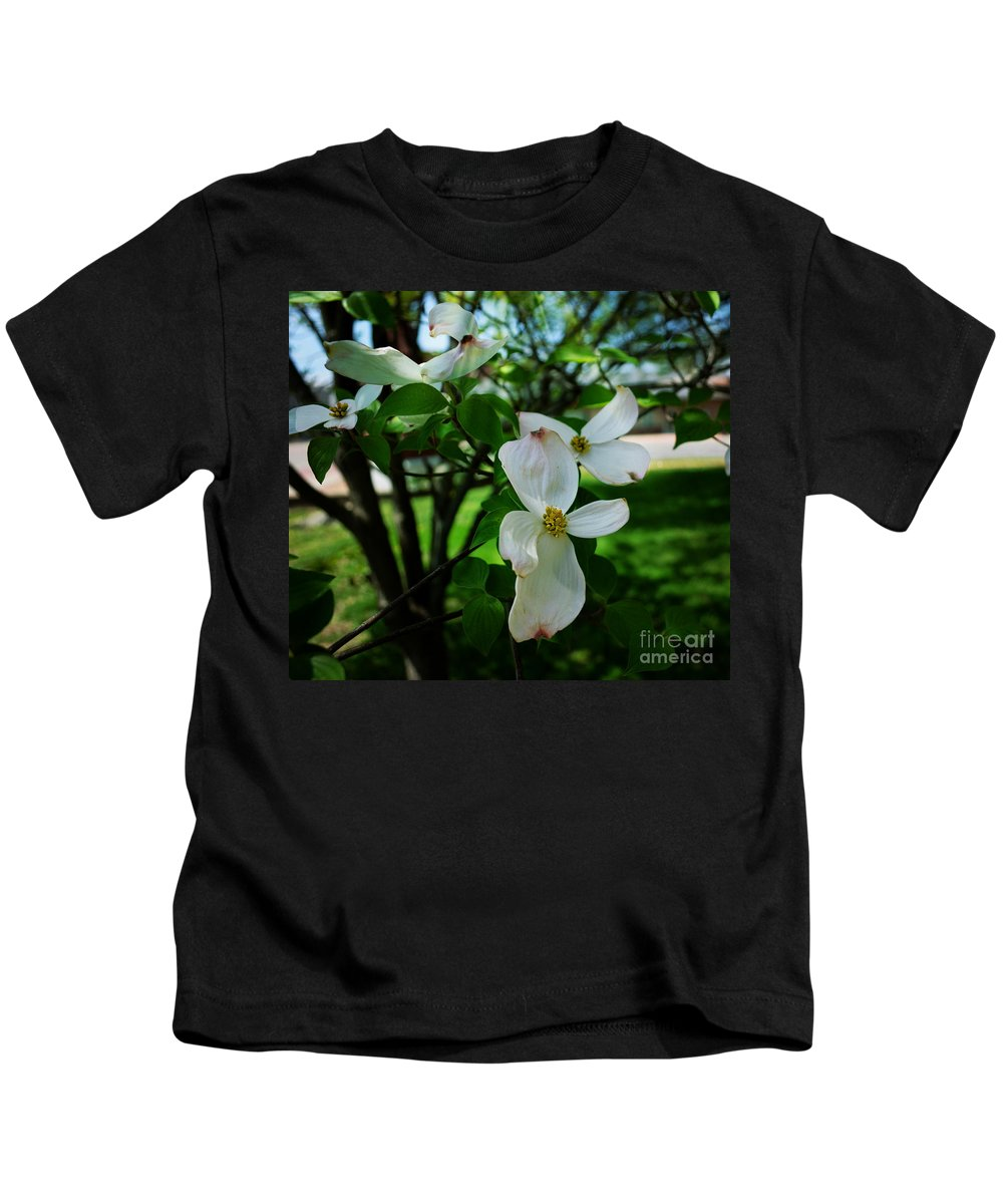 Vandalia Illinois Kids T-Shirt featuring the photograph Illinois Capitol Dogwood by Luther Fine Art