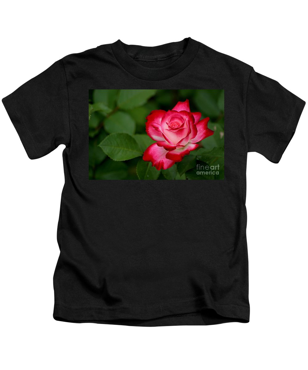 Roses Kids T-Shirt featuring the photograph In All It's Beauty by Living Color Photography Lorraine Lynch