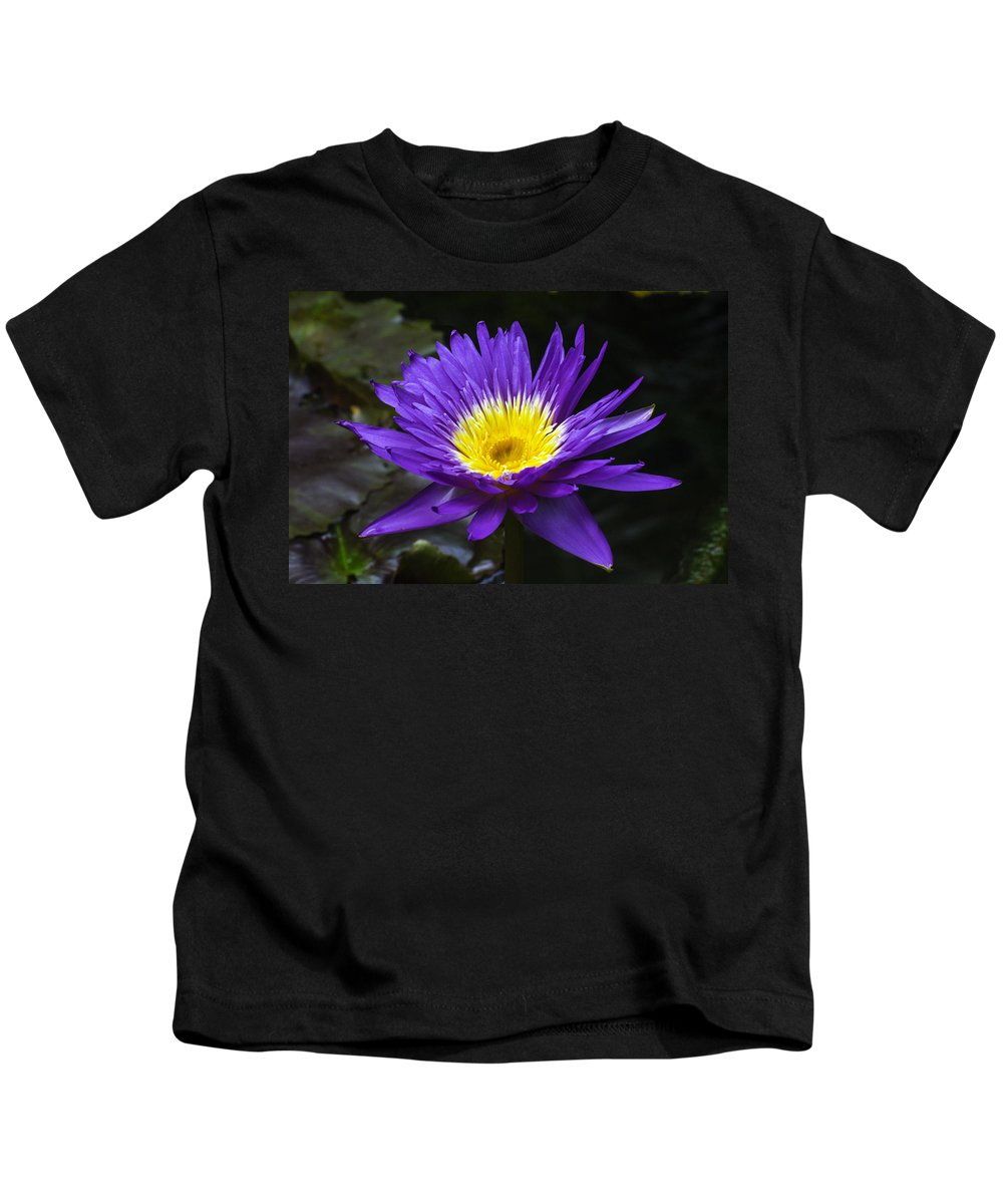 Flower Kids T-Shirt featuring the photograph Indigo Water Lotus by Gene Norris