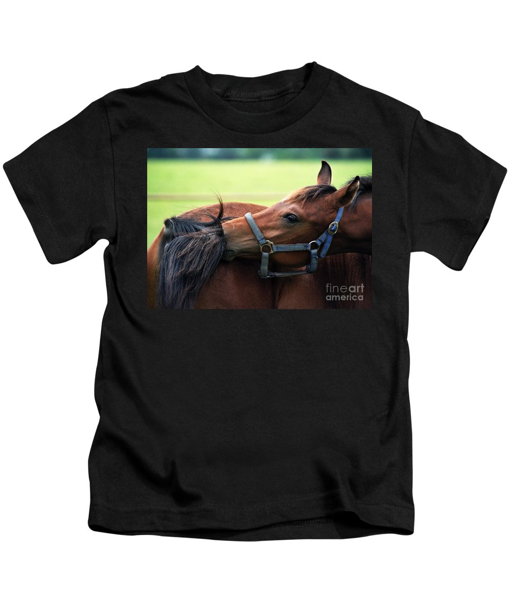 Horse Kids T-Shirt featuring the photograph Is It My Tail by Angel Ciesniarska