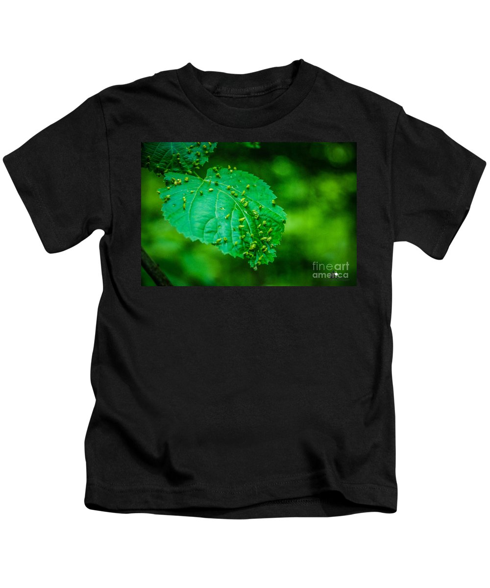 Leaf Kids T-Shirt featuring the photograph Leaf Gall by Grace Grogan