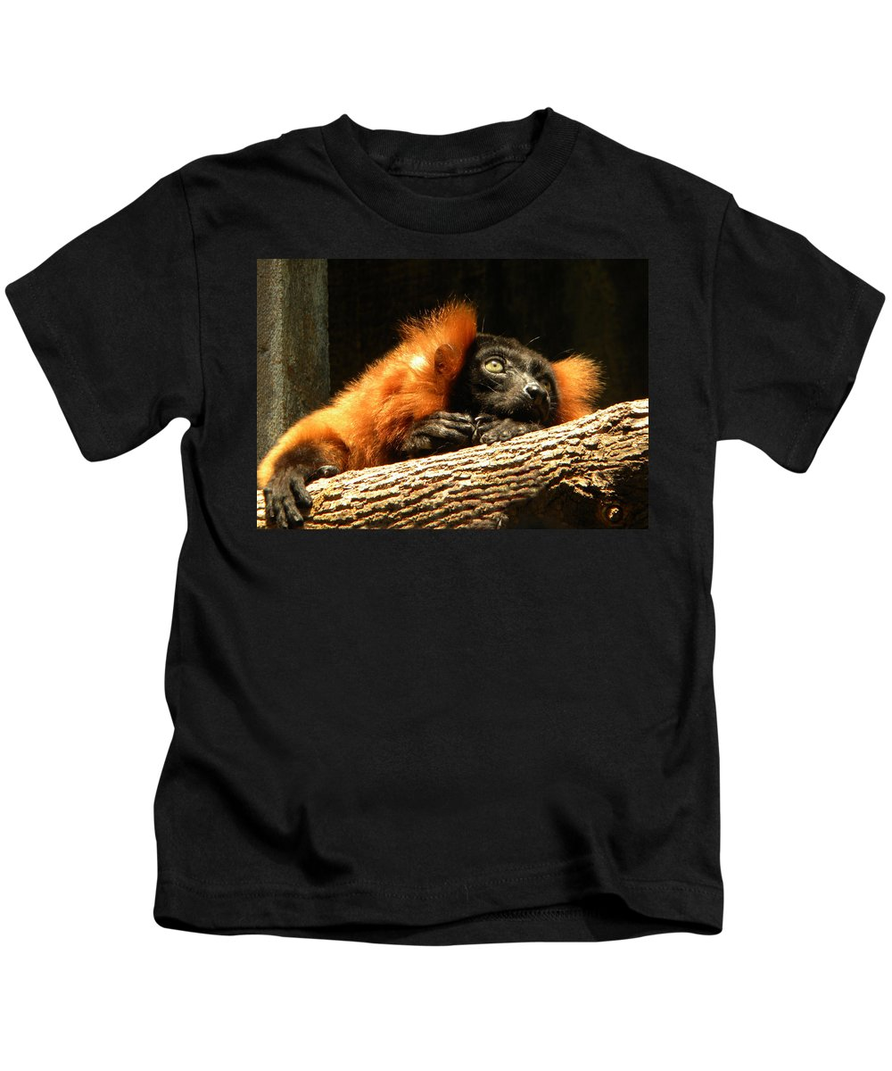 Lemur Kids T-Shirt featuring the photograph Lemur In Longing by Phillip W Strunk