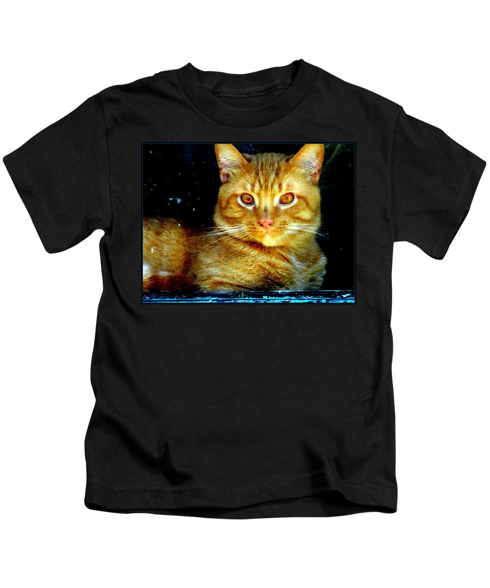 Cat Kids T-Shirt featuring the photograph Leo by Kathy Barney