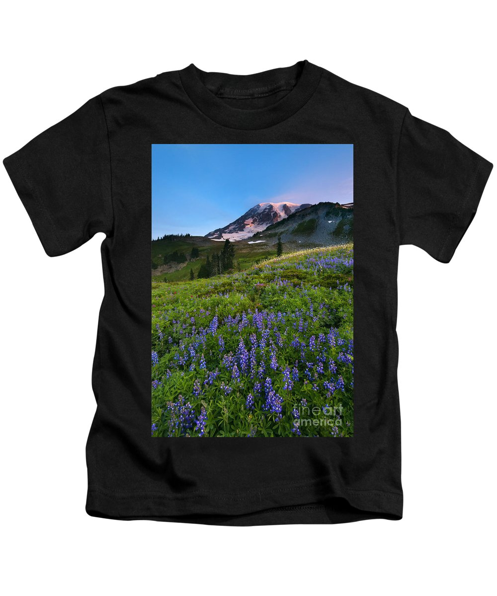 Meadow Kids T-Shirt featuring the photograph Light On The Mountain by Mike Dawson