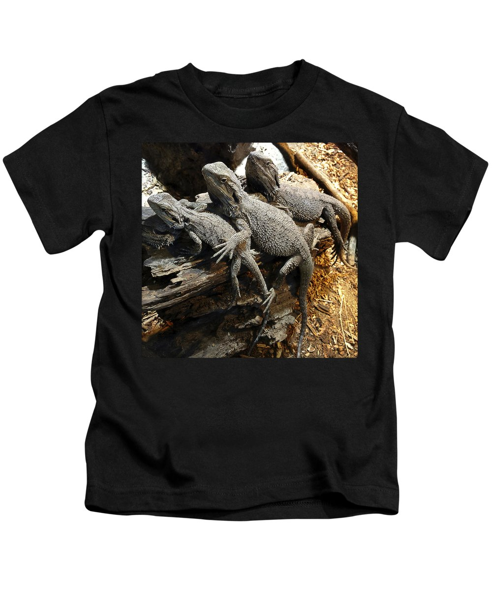 Team Kids T-Shirt featuring the photograph Lizards by Les Cunliffe