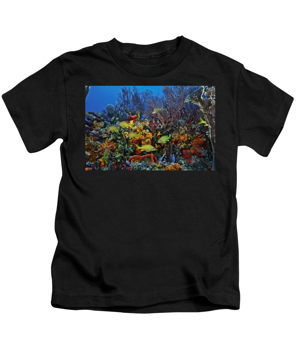 Art Kids T-Shirt featuring the photograph Lynns Reef On A Perfect Day by Sandra Edwards