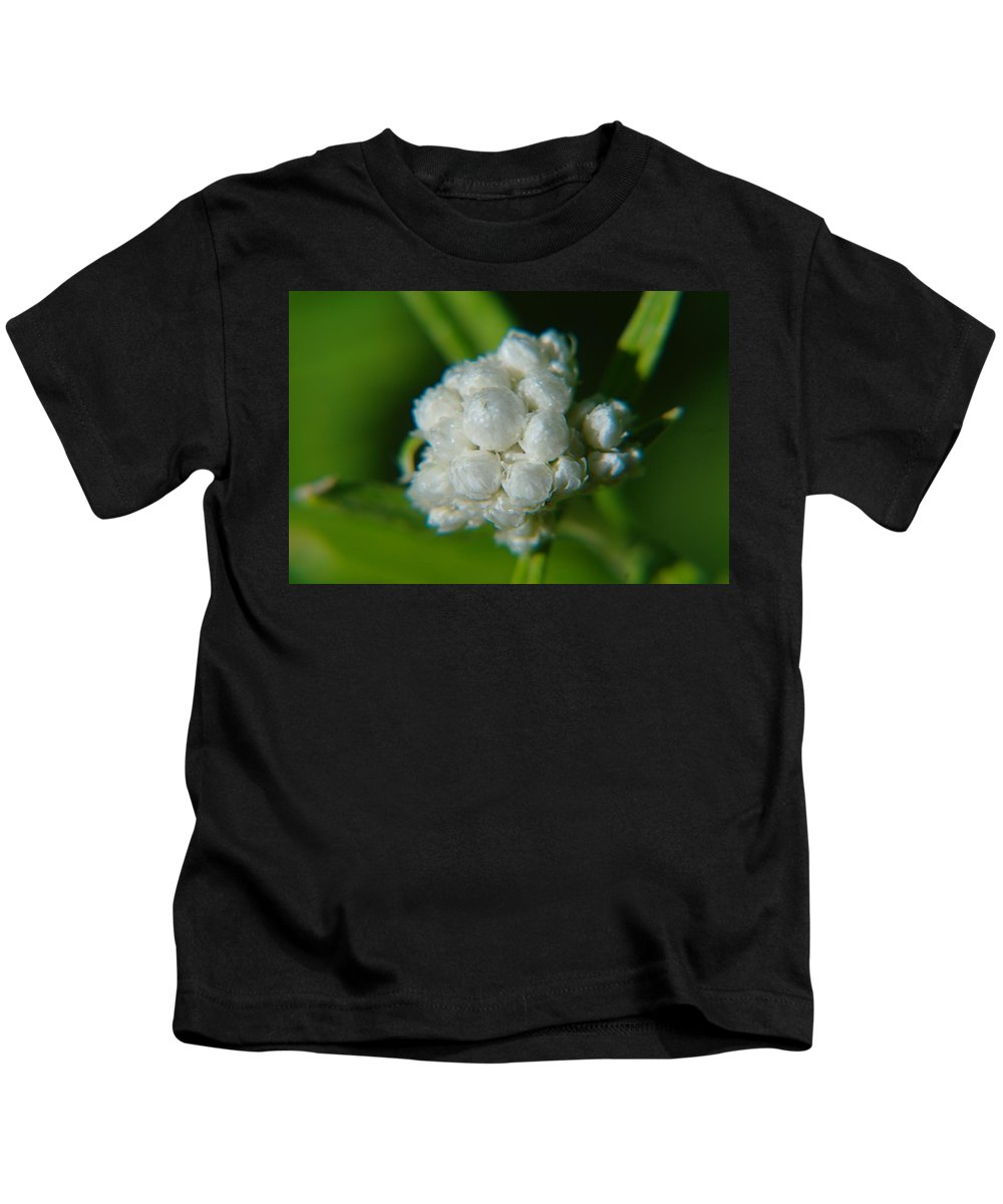 Macros. Floral Kids T-Shirt featuring the photograph Macro Of A White Bulb by Jeff Swan