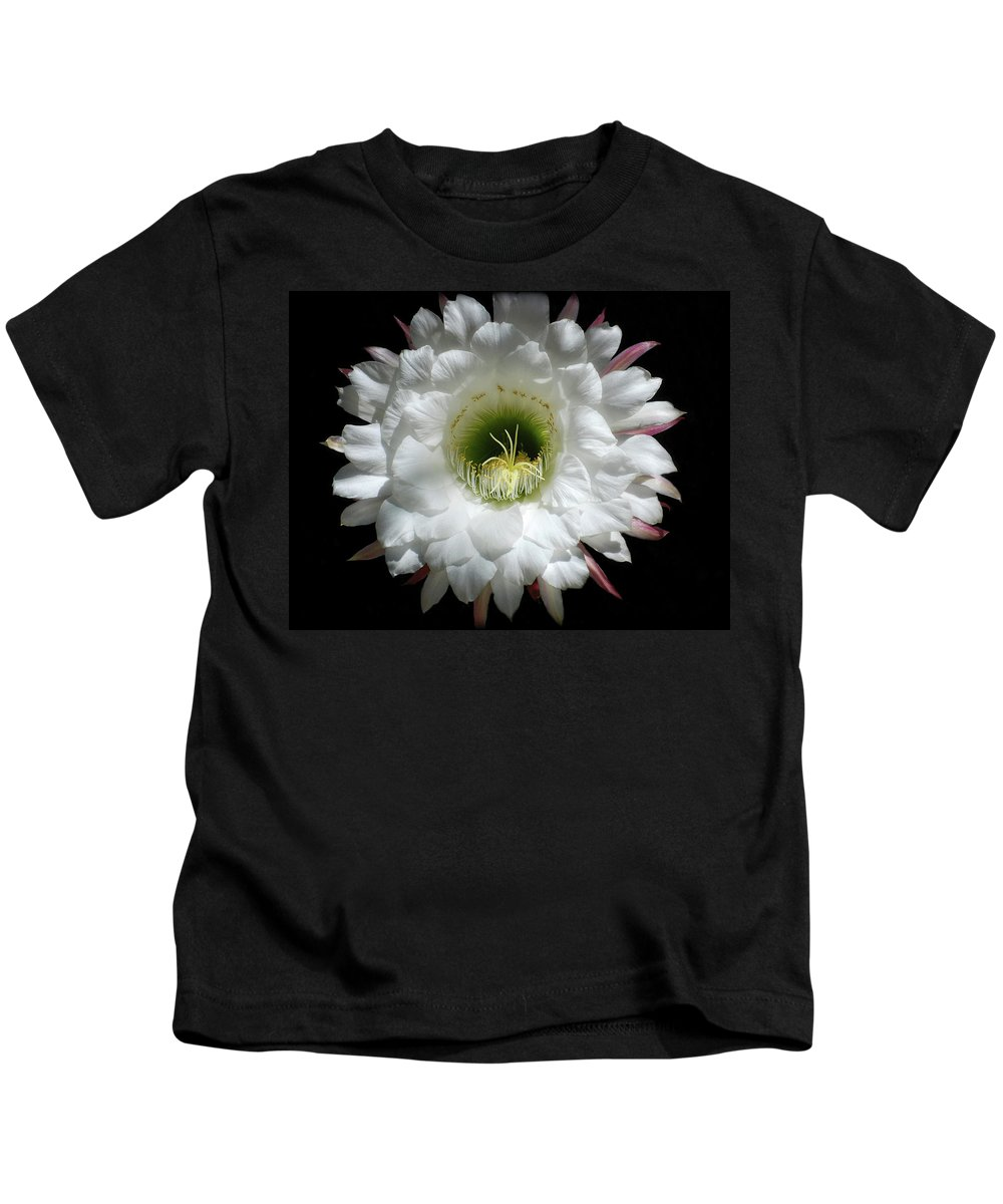 Arizona Kids T-Shirt featuring the photograph Magic Of The Night by Saija Lehtonen