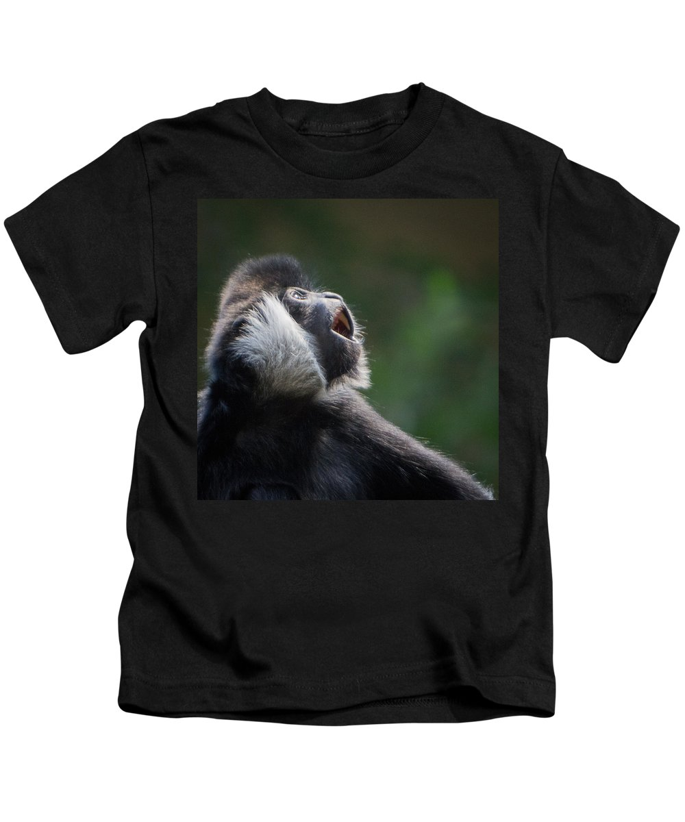 Square Kids T-Shirt featuring the photograph Male White-cheeked Gibbon by Patti Deters