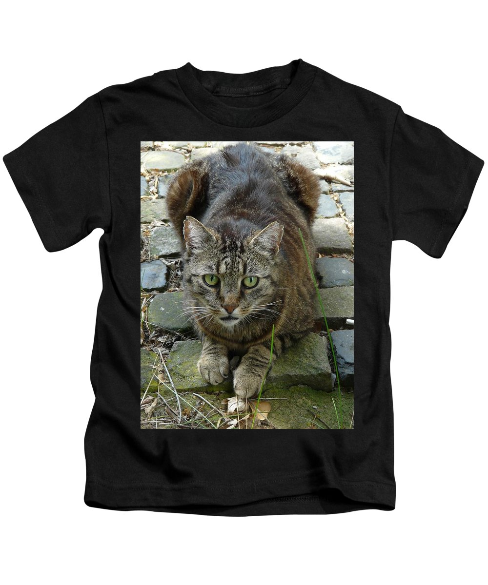 Cat Kids T-Shirt featuring the photograph Marco by Valerie Ornstein