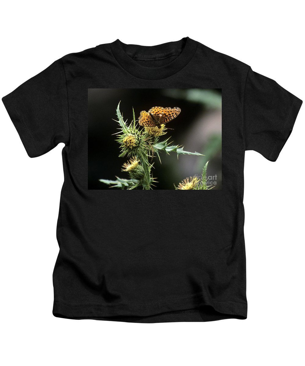Butterfly Kids T-Shirt featuring the photograph Monarch On Thistle by Kathy McClure