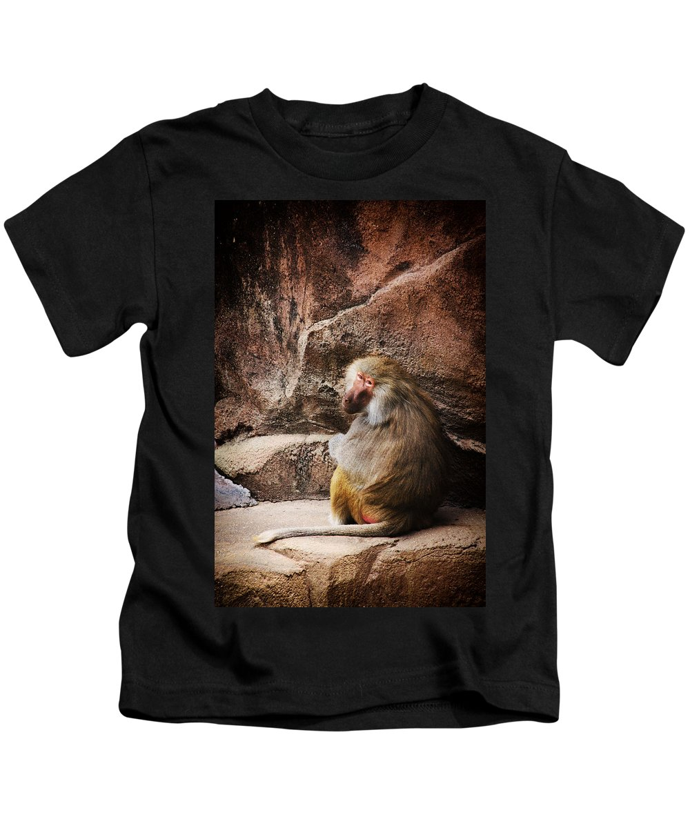 Monkey Kids T-Shirt featuring the photograph Monkey Business by Karol Livote