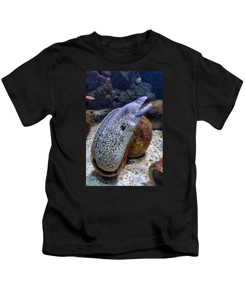 Eel Kids T-Shirt featuring the photograph Moray Eel by FL collection
