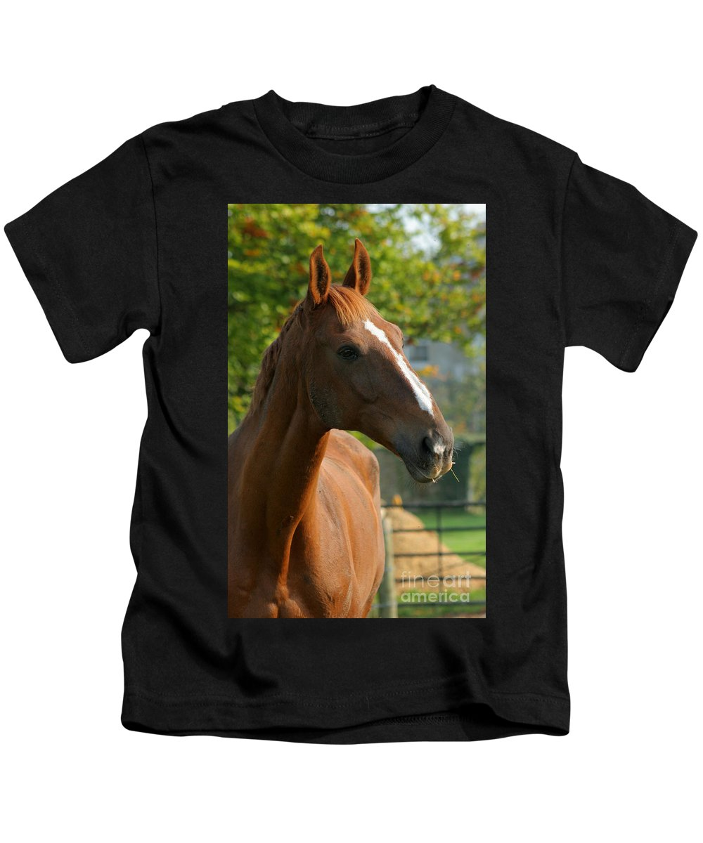 Horse Kids T-Shirt featuring the photograph Mr Handsome by Angel Ciesniarska