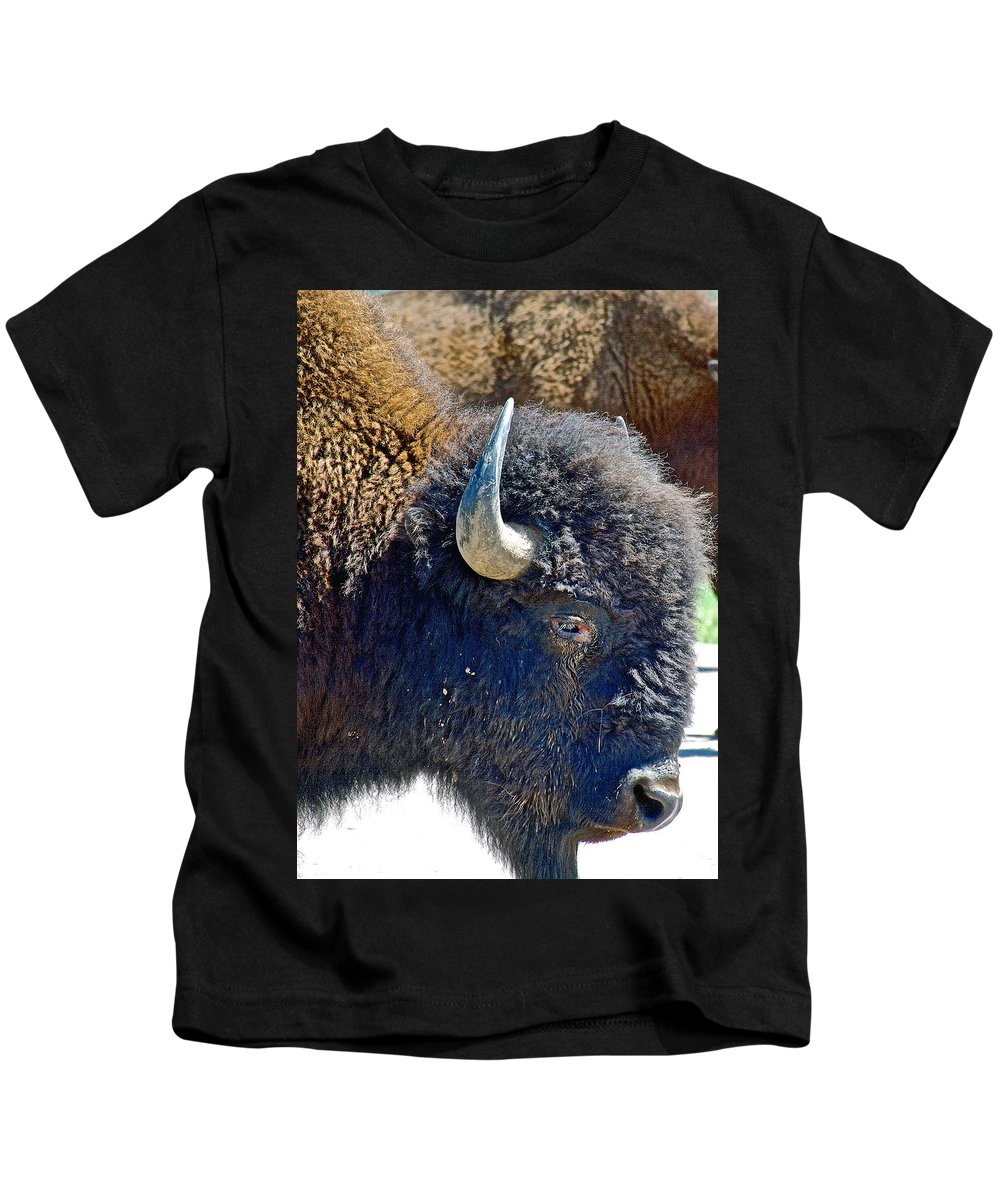 Multi-color-eyed Bison Near Wildlife Loop Road In Custer State Park Kids T-Shirt featuring the photograph Multi-color-eyed Bison Near Wildlife Loop Road In Custer State Park-south Dakota by Ruth Hager