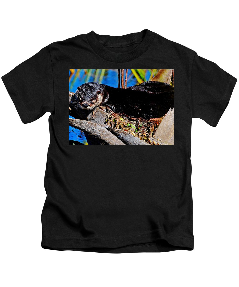 Otter Kids T-Shirt featuring the photograph Nap Time by Davids Digits