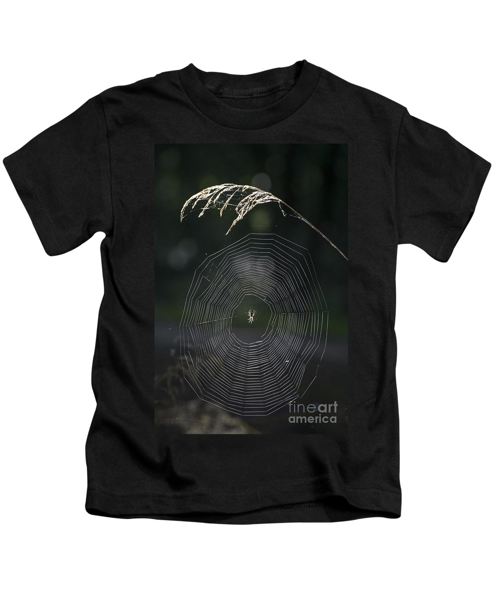 Spiderweb Kids T-Shirt featuring the photograph Natures Fabrics by Heiko Koehrer-Wagner