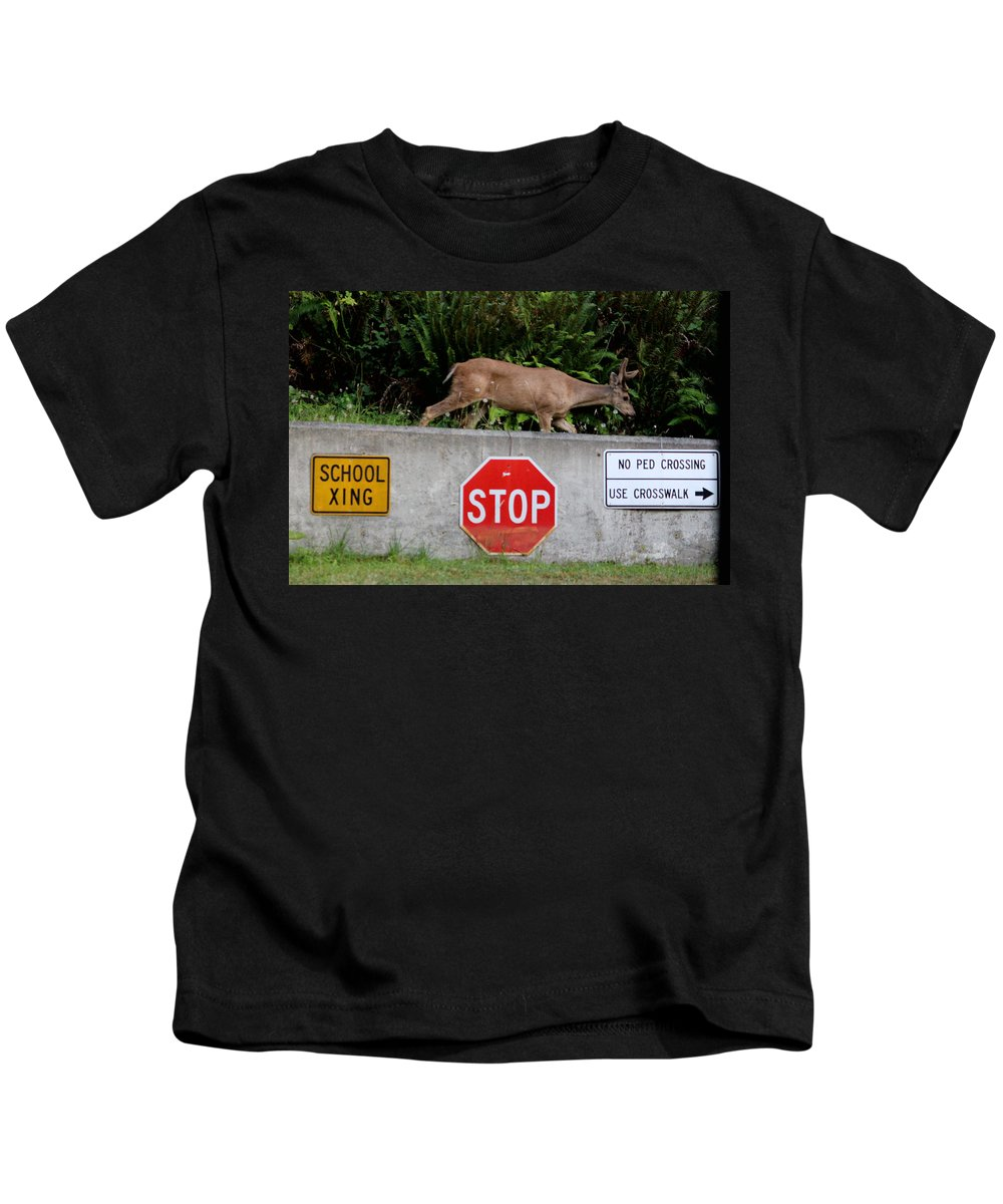 Mammals Kids T-Shirt featuring the photograph Not The Crosswalk Again by Kym Backland