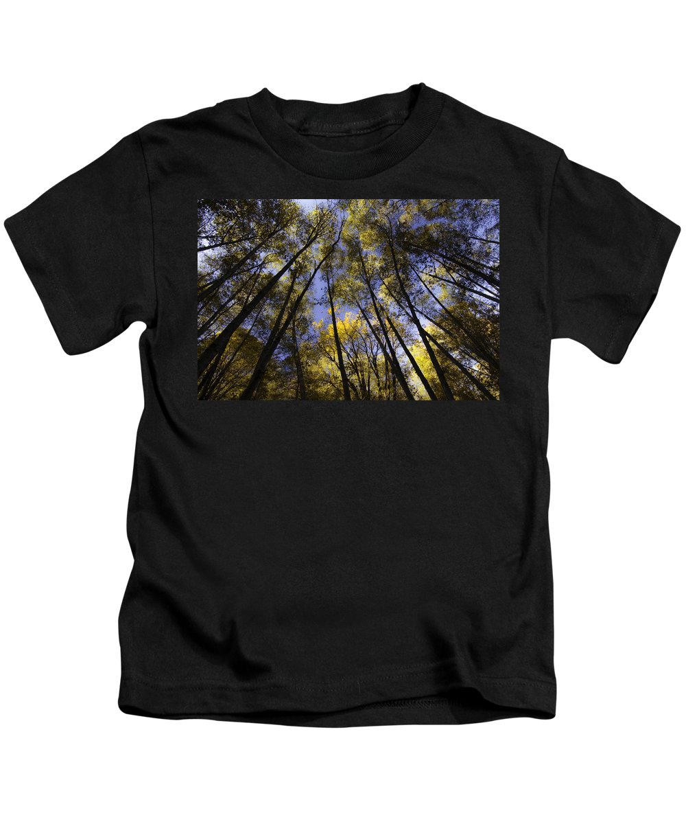 Fall Kids T-Shirt featuring the photograph October by Ryan McGinnis