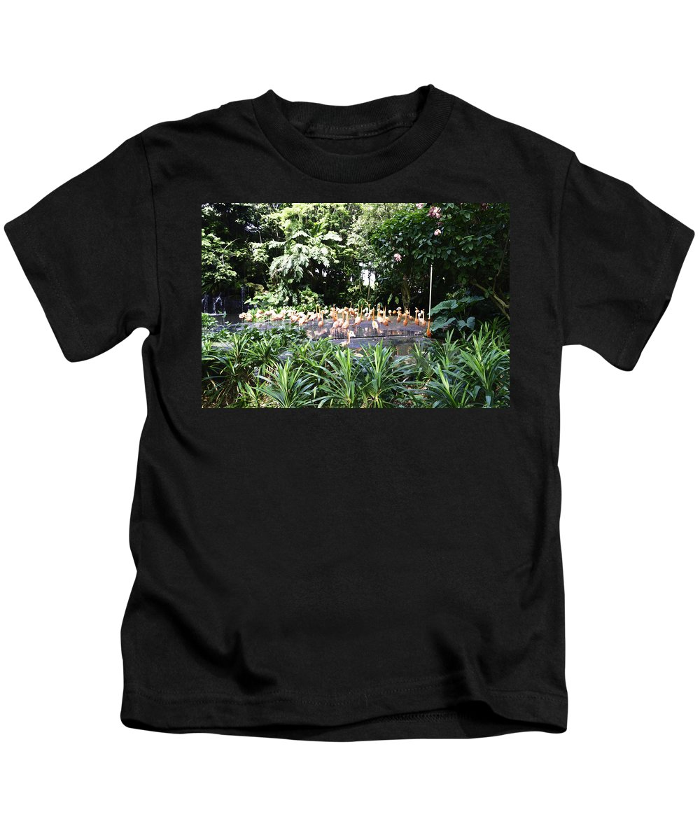 Asia Kids T-Shirt featuring the photograph Oil Painting - A Number Of Flamingos Surrounded By Greenery In Their Enclosure by Ashish Agarwal