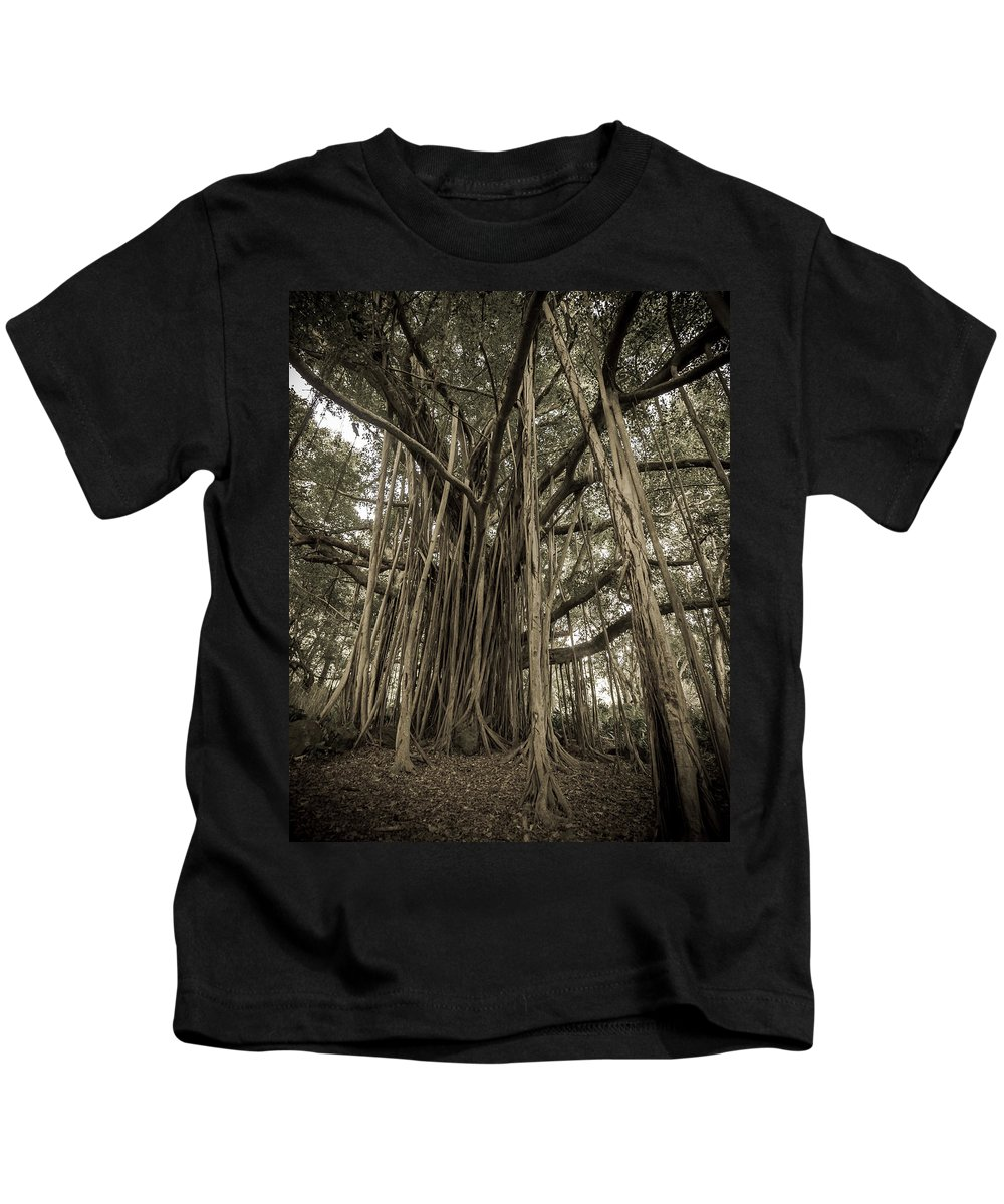 3scape Kids T-Shirt featuring the photograph Old Banyan Tree by Adam Romanowicz