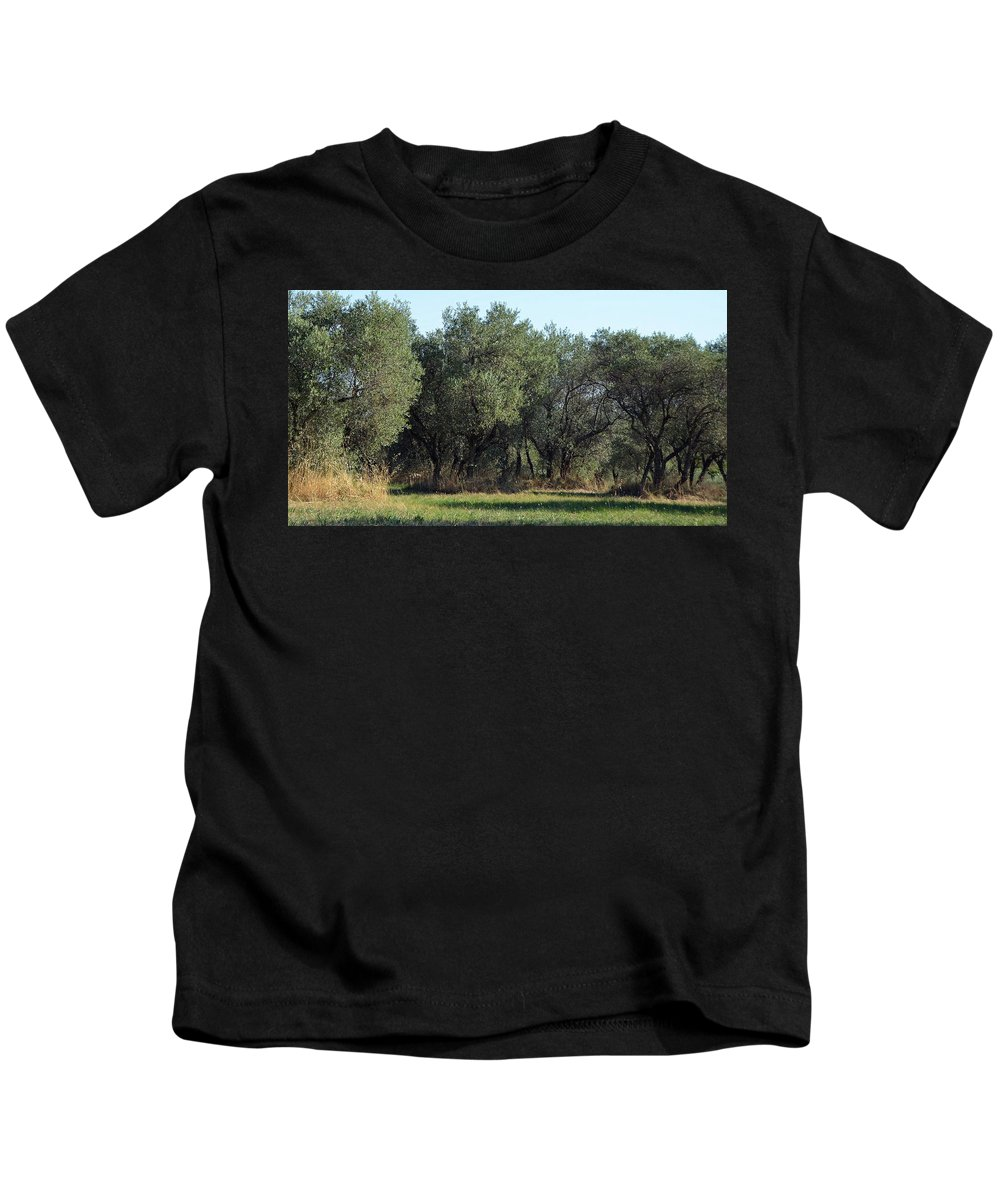 Olive Kids T-Shirt featuring the photograph Olive Trees Of Provence by Carla Parris