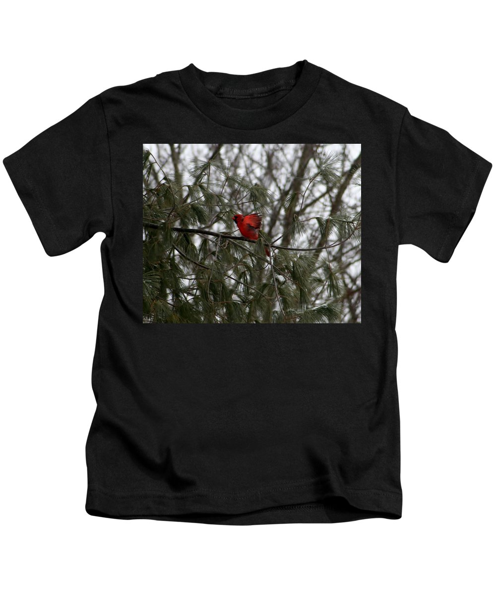 Bird Kids T-Shirt featuring the photograph On His Way by Barbara S Nickerson