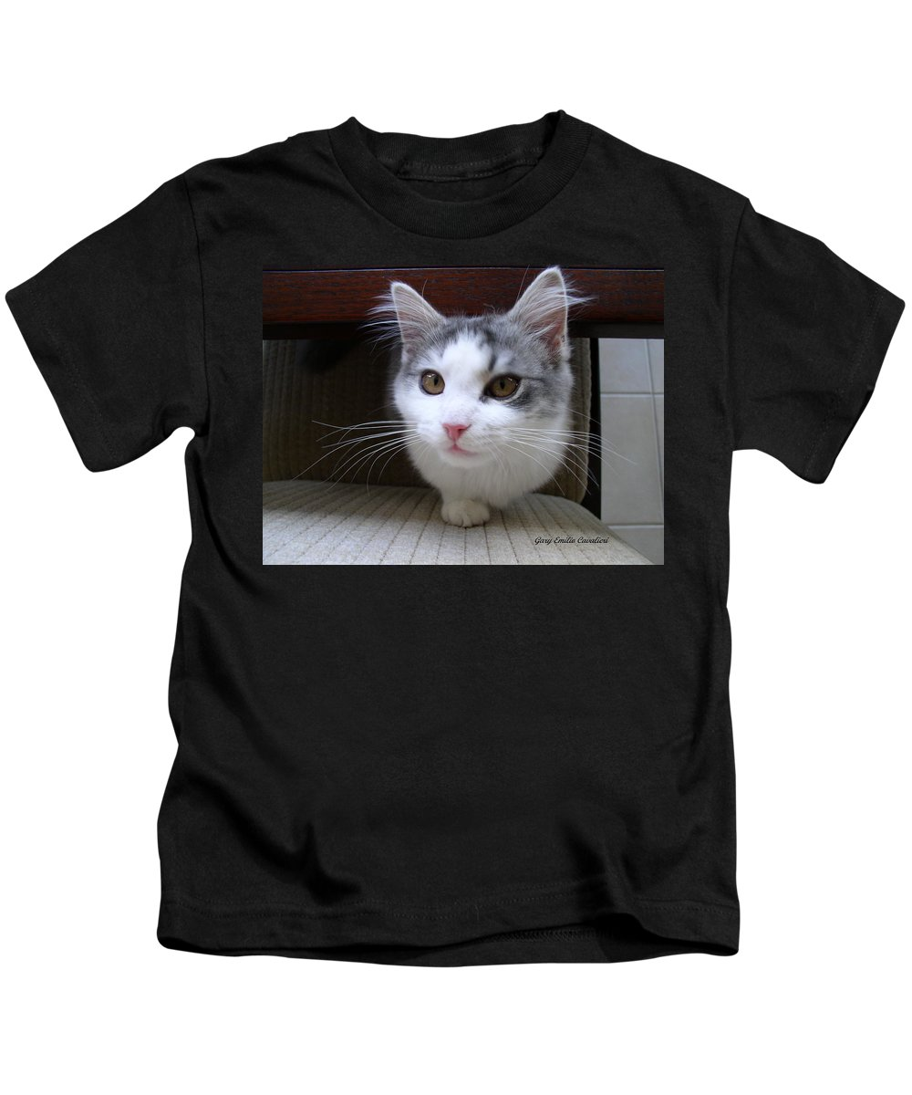Cats Kids T-Shirt featuring the photograph One Legged Kitty by Gary Emilio Cavalieri