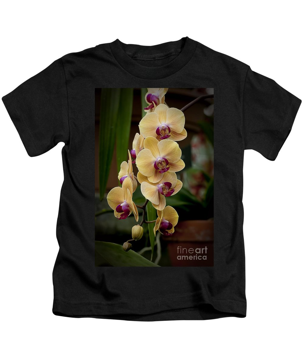 Orchids Kids T-Shirt featuring the photograph Orchids Pictures 10 by World Wildlife Photography