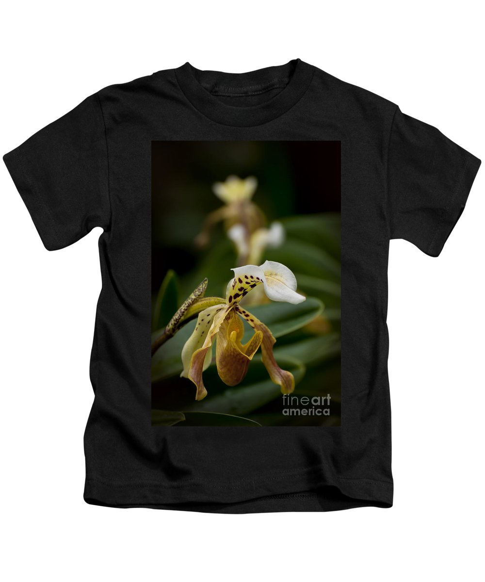 Orchids Kids T-Shirt featuring the photograph Orchids Pictures 28 by World Wildlife Photography