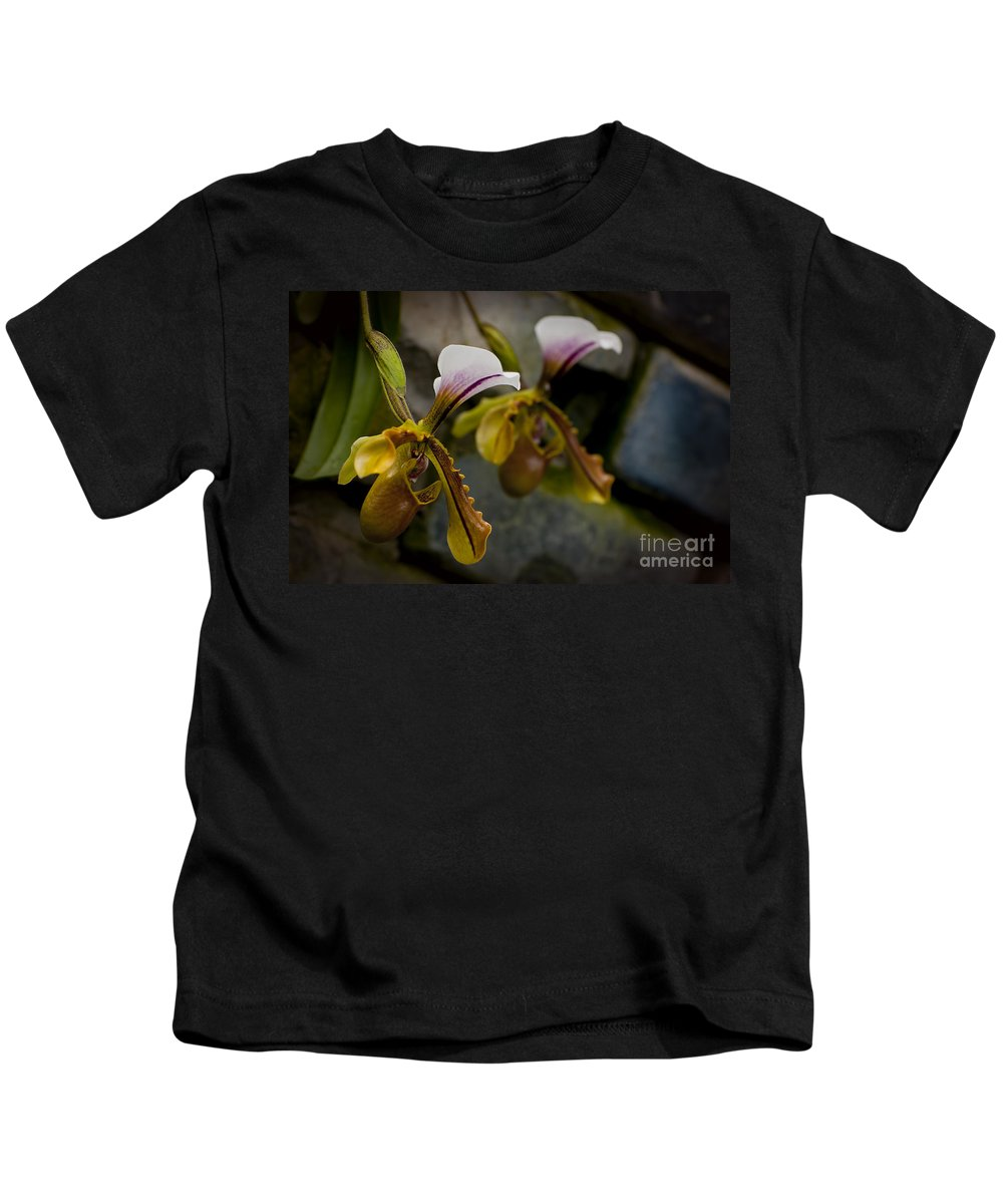 Orchids Kids T-Shirt featuring the photograph Orchids Pictures 30 by World Wildlife Photography