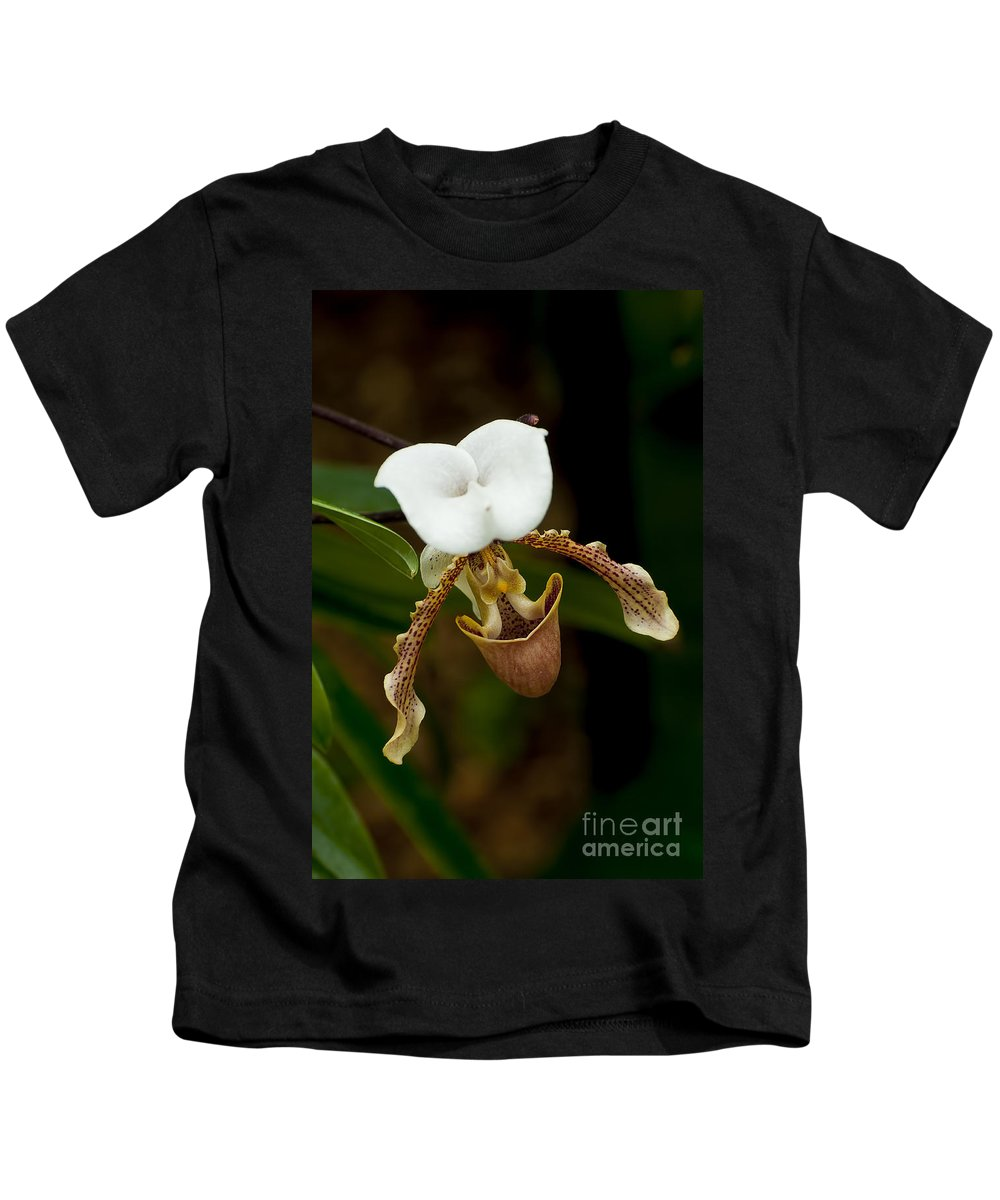 Orchids Kids T-Shirt featuring the photograph Orchids Pictures 31 by World Wildlife Photography