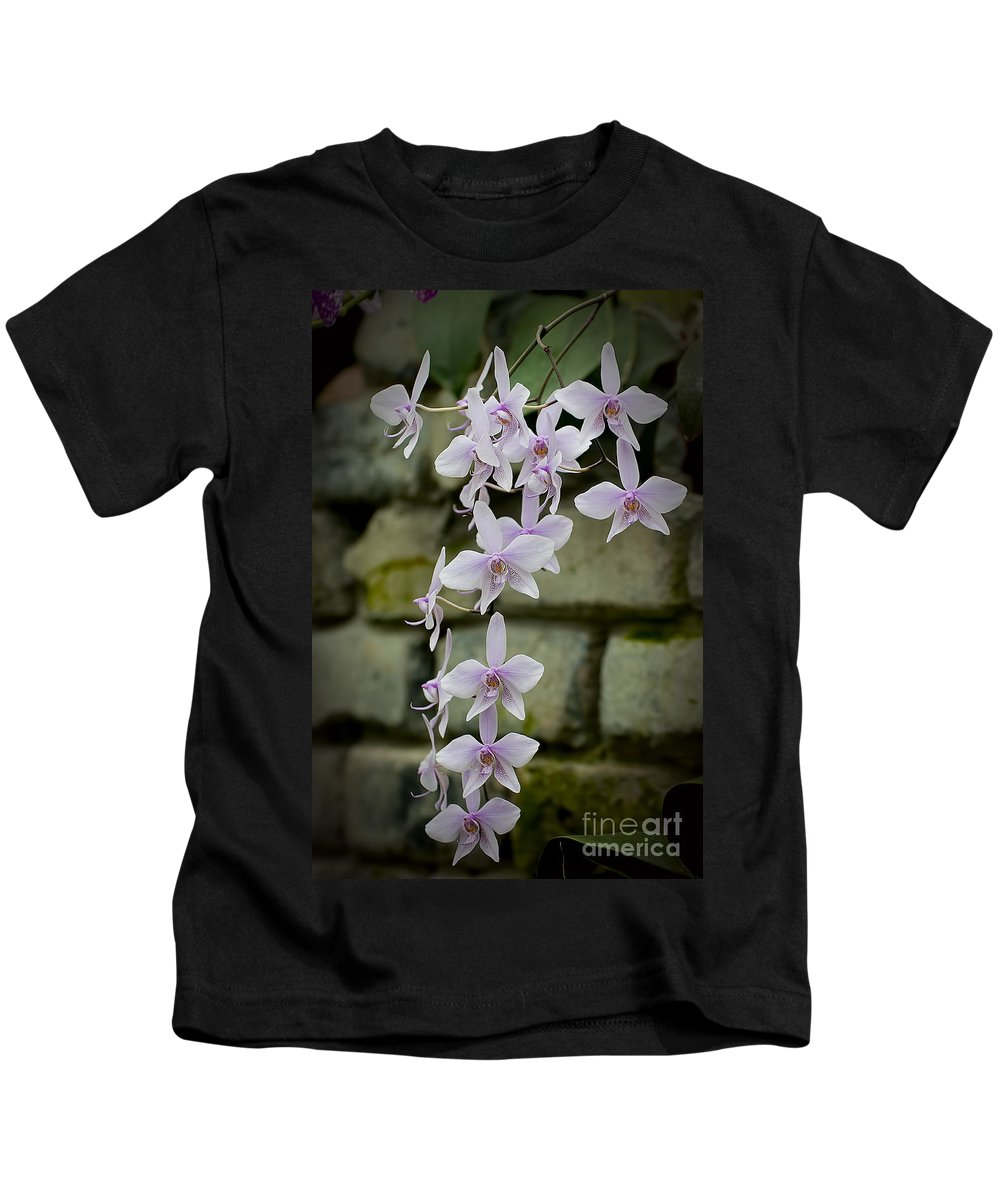 Orchids Kids T-Shirt featuring the photograph Orchids Pictures 47 by World Wildlife Photography