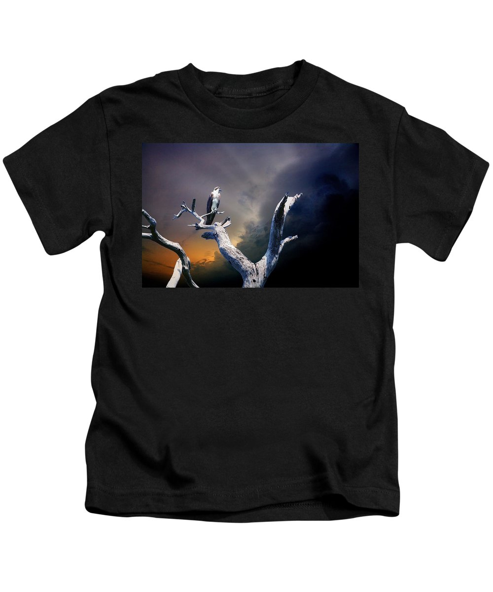 Osprey Kids T-Shirt featuring the photograph Osprey by Mal Bray