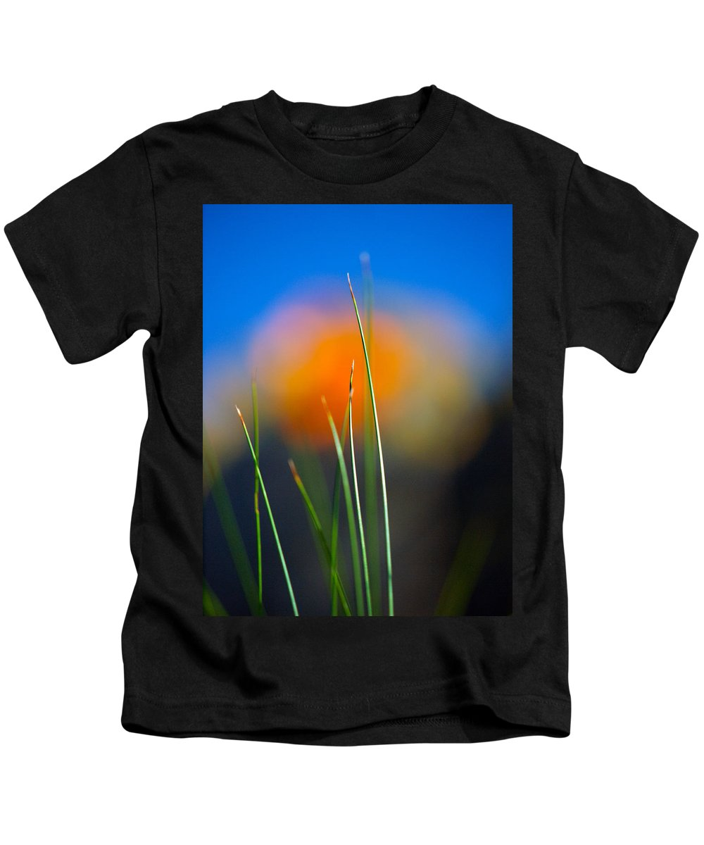 Flora Kids T-Shirt featuring the photograph Papyrus by Joe Schofield