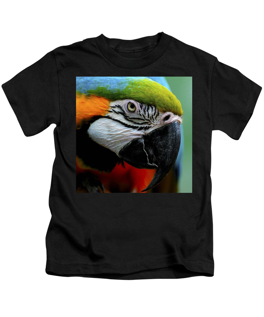 Beak Kids T-Shirt featuring the photograph Parrot 13 by Ingrid Smith-Johnsen