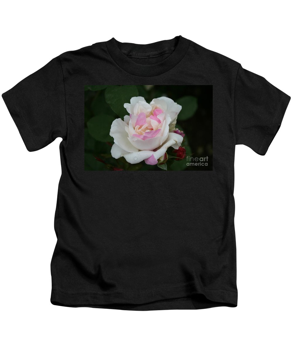 Rose Kids T-Shirt featuring the photograph Pastel Summer Dream by Christiane Schulze Art And Photography