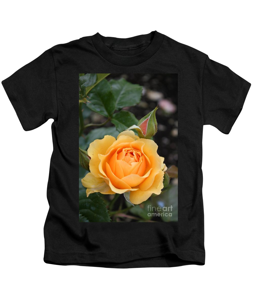 Rose Kids T-Shirt featuring the photograph Perfect Rose by Christiane Schulze Art And Photography