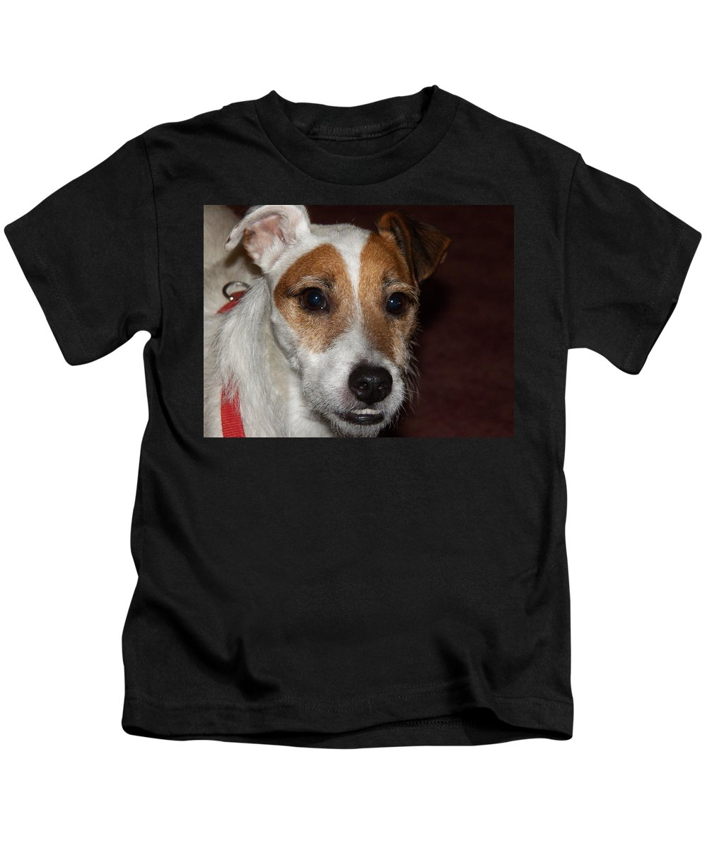 Digital Photography Kids T-Shirt featuring the photograph Petey Dog Jack Russell by Laurie Kidd