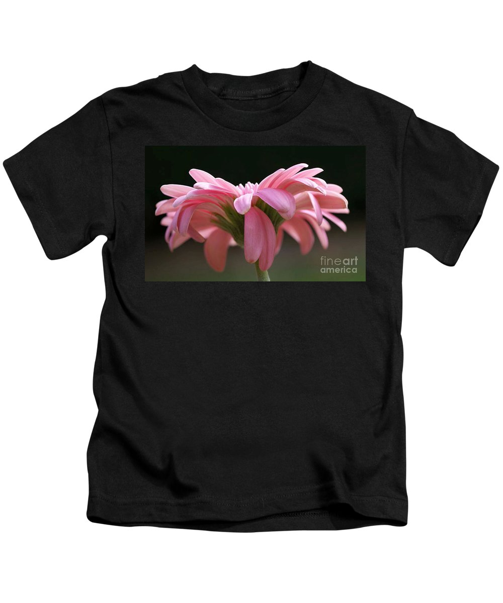 Pink Kids T-Shirt featuring the photograph Pink Daisy 1 by Carol Lynch