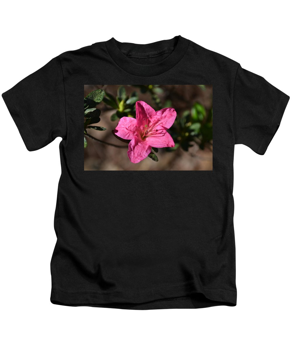 Flower Kids T-Shirt featuring the photograph Pink Flower by Tara Potts