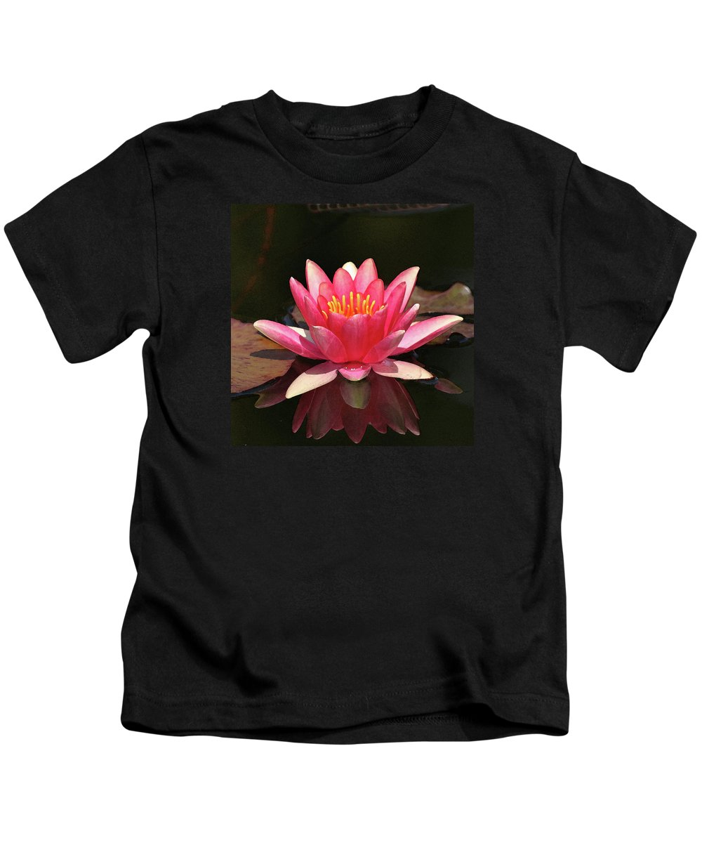 Lily Kids T-Shirt featuring the photograph Pink Waterlily by Art Block Collections