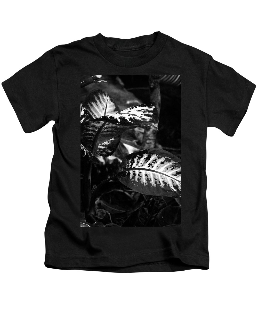 Lillies Kids T-Shirt featuring the photograph Plant 8658 by Timothy Bischoff